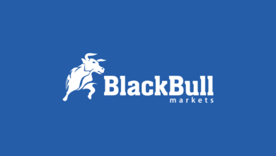 Photo of BlackBull Markets Gets Licence from New Zealand's FMA